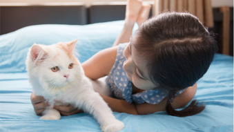 Care for Your Cat Online Training Course